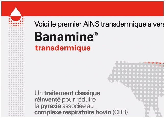 Vidéo sur le mode d'action du premier produit d'administration transdermique AINS pour soulager la douleur chez les bovins