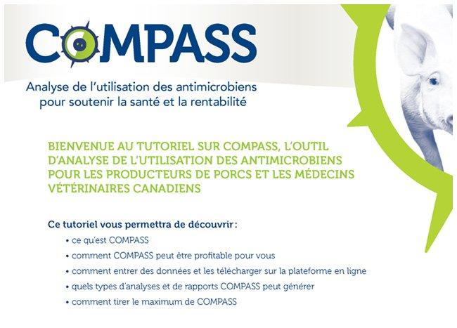 Tutoriel en ligne sur l'outil d'étalonnage antimicrobien destiné aux producteurs et médecins vétérinaires dans l'industrie du porc canadien