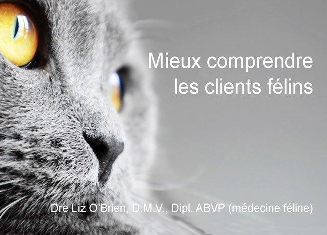 Webdiffusion réalisée pour les médecins vétérinaires canadiens