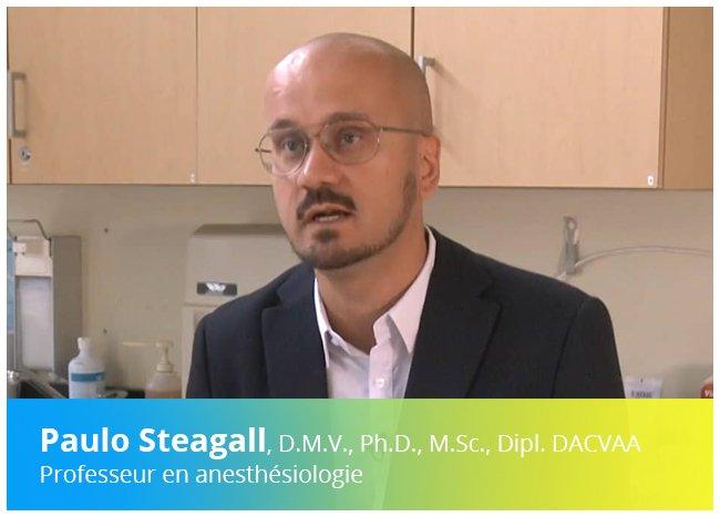 Vidéo d'une entrevue avec un spécialiste en anesthésie vétérinaire