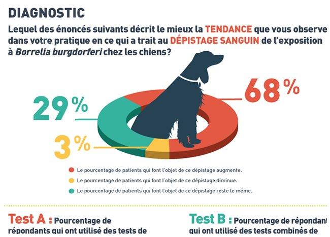 Infographie qui présente les résultats d'un sondage sur les tests relatifs à la maladie de Lyme