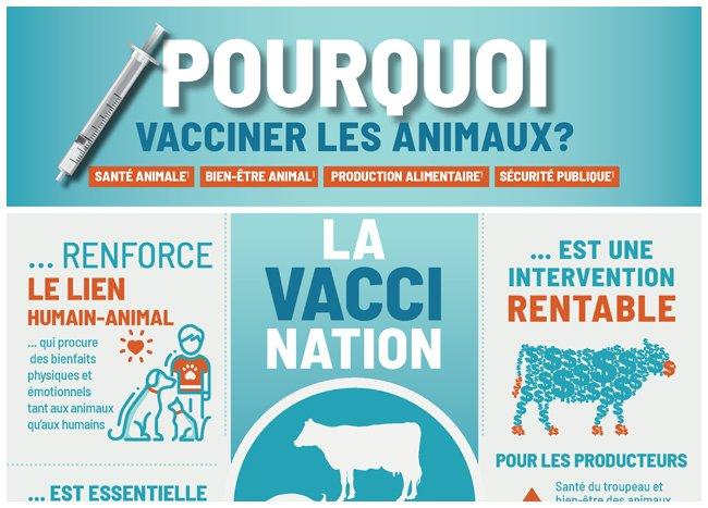 Infographie sur Pourquoi vacciner les animaux